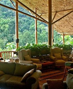 the Engagi Lodge, Bwindi