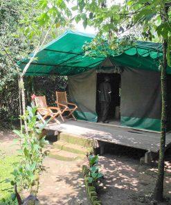 Wagtail Safari Camp
