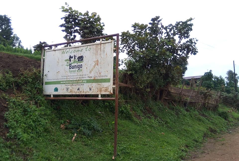 Buniga Forest Walk