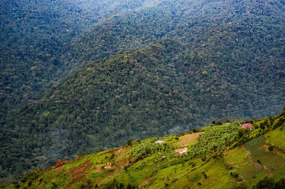 Hilly Bwindi Altitude