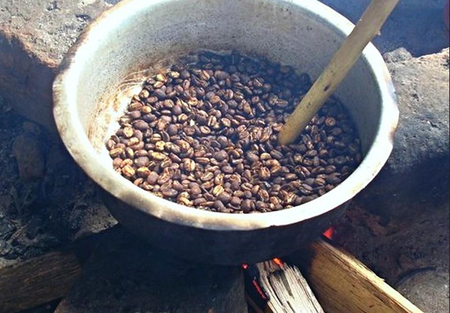 Bwindi Coffee Experience